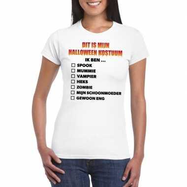 Carnavalskleding lijstje t shirt wit dames