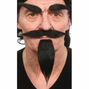 Carnavalskleding set zwart snor, baard en wenkbrauwen