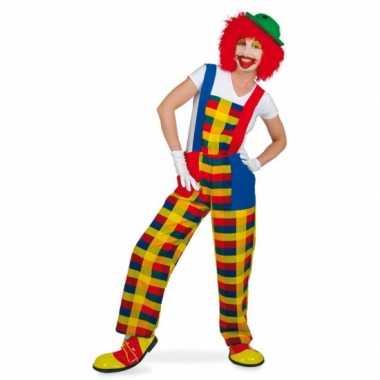 Clown pebbi carnavalskleding voor volwassenen