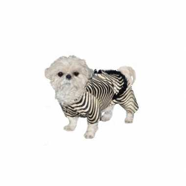 Honden zebra carnavalskleding