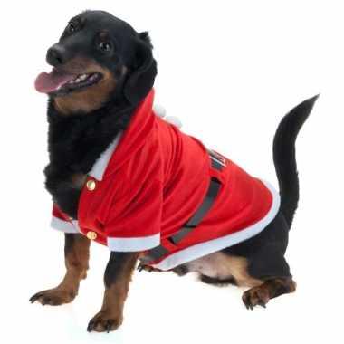 Kerst carnavalskleding voor honden