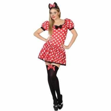 Muis/mouse carnavalskleding/jurk voor dames