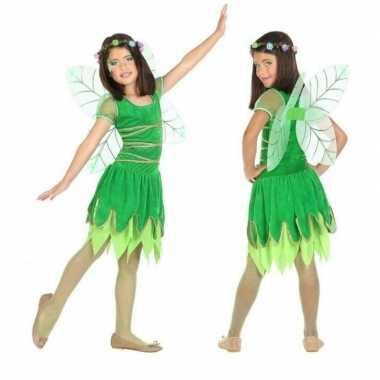 Toverfee/elfje fay carnavalskleding/jurkje voor meisjes