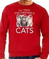Kitten kerst sweater carnavalskleding all i want for christmas is cats rood voor heren